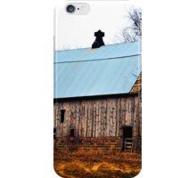Willow Barn 3 iPhone Case/Skin