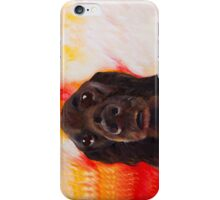 Flat Coated Retriever iPhone Case/Skin
