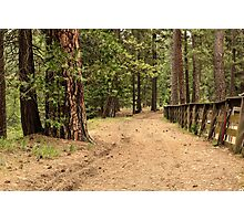 Mountain Trail Photographic Print
