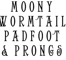 Moony Wormtail Padfoot and Prongs by rachelshade