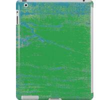 Korean Maple Wetlands iPad Case/Skin