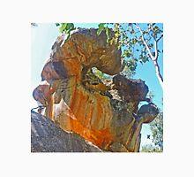 Sculpture by Nature Unisex T-Shirt