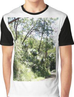 Spicers Gap road, Queensland, Australia (2) Graphic T-Shirt