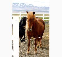 Icelandic horse (2) Unisex T-Shirt