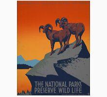 WPA Vintage National Parks Wildlife Travel Unisex T-Shirt