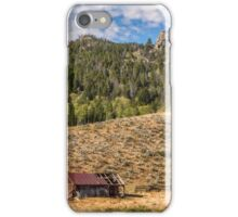 Homestead iPhone Case/Skin