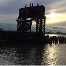 Abandoned New York Central Railroad 69th Street Transfer Station, Hudson River, Hudson River Park, New York City by lenspiro