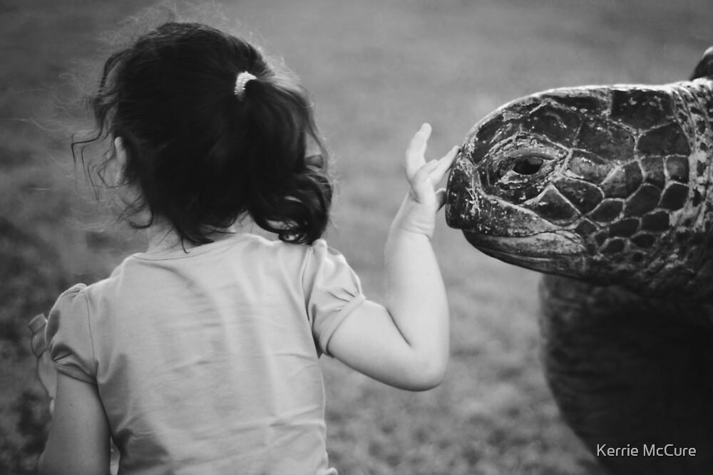 Bye bye turtle by KerrieMcSnap