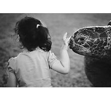 Bye bye turtle Photographic Print
