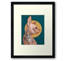 Tattoo Sphinx Cat Framed Print