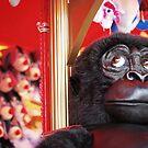 Cheeky monkey by KerrieMcSnap