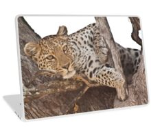 Watchful leopard Laptop Skin
