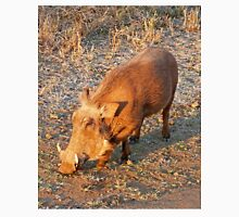 Warthog, Kruger National Park, South Africa Unisex T-Shirt
