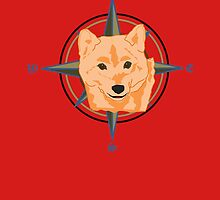 Dog Compass by fitch