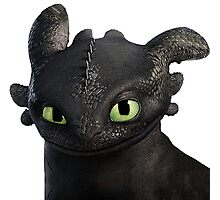 How to Train Your Dragon 3 Photographic Print