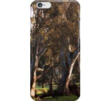 Happy Meadow in Australia iPhone Case/Skin
