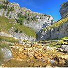 Gordale Scar 1 by Colin  Williams Photography