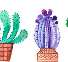 Cacti by Kristin Sheaffer