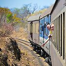 Bulawayo to Vic Falls by Tim Cowley