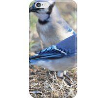 Jays iPhone Case/Skin