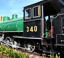 steam train by demor44