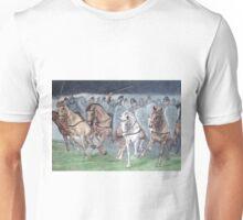 1066 Unisex T-Shirt