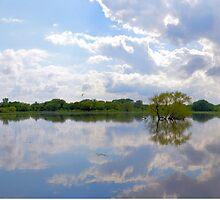 Iowa Flood Plains Panorama by LynyrdSky