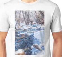 Bear Creek Lake State Park Unisex T-Shirt