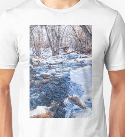 Bear Creek Lake State Park Unisex T-Shirt