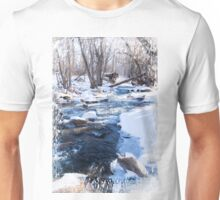 Bear Creek Lake State Park, Morrison Colorado Unisex T-Shirt