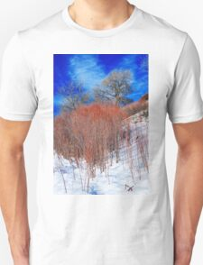 Winter in Colorado Unisex T-Shirt