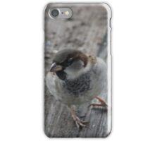 Sparrow iPhone Case/Skin