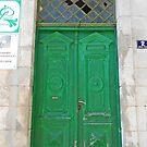 Green door by rasim1