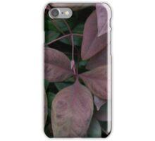"""Blush Pink Nadina"" by Carter L. Shepard""  iPhone Case/Skin"