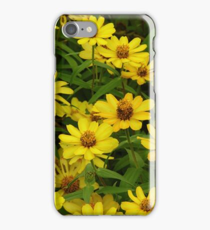 """""""Daisies"""" by Carter L. Shepard""""  iPhone Case/Skin"""