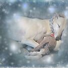 Lara's Christmas by Christina Brundage
