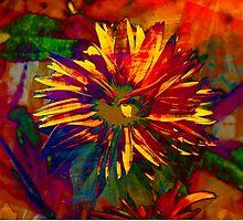 """""""Daisy"""" by Carter L. Shepard""""  by echoesofheaven"""