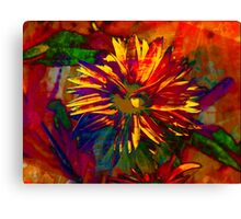 """""""Daisy"""" by Carter L. Shepard""""  Canvas Print"""