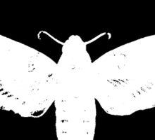 Spector - Moth Boys Logo Sticker