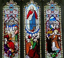 Stained Glass window, St Luke the Physician, Richmond by Margaret  Hyde