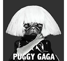PUGGY GAGA Photographic Print