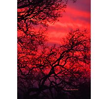 Ruby Sunset Photographic Print