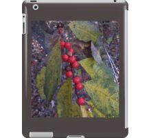 Berry Red iPad Case/Skin