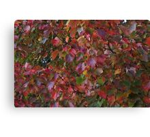 Foliage Immersion Canvas Print