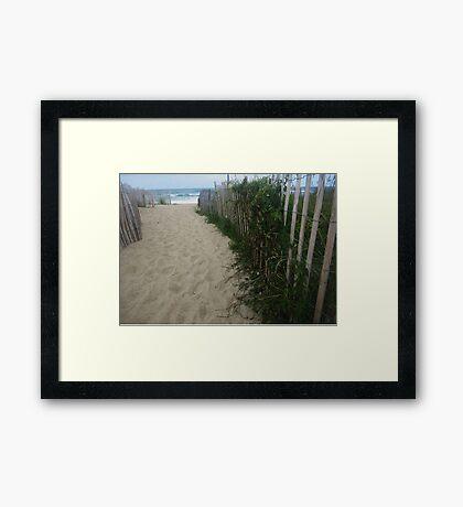 Tendrils Beckon Framed Print