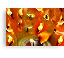 candes Canvas Print