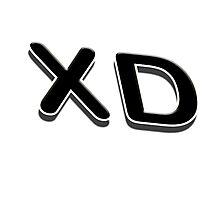XD Photographic Print