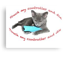 Cat and Wii Metal Print