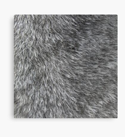GREY WOLF FUR Canvas Print