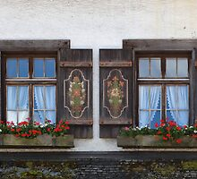 Windows and flowers by Yair Karelic